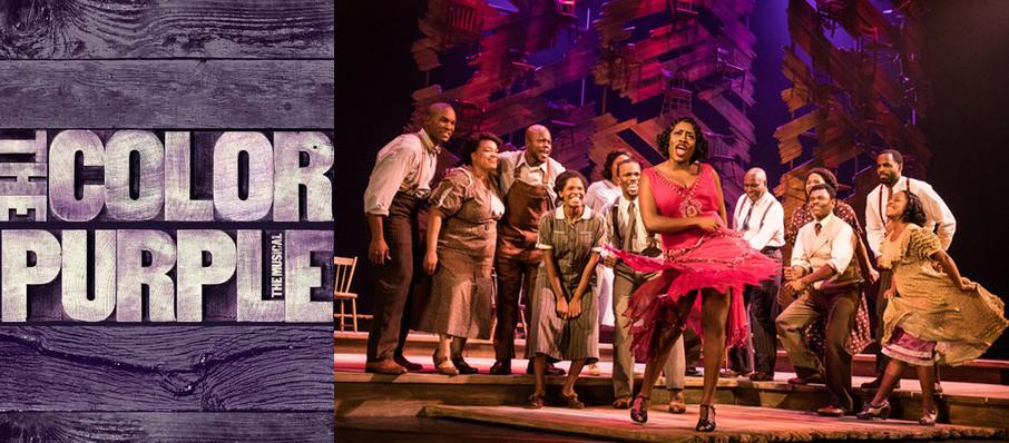 The Color Purple at State Theatre